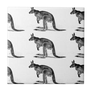Azulejo canguro encajonado - en cuadrado