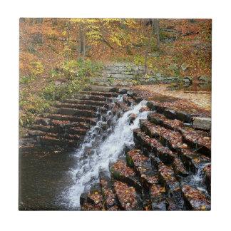 Azulejo Cascada en el parque de estado de la colina del