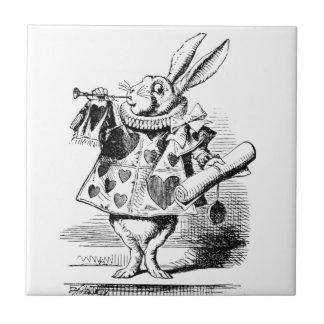 Azulejo Conejo blanco