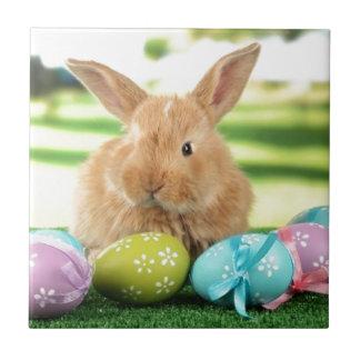 Azulejo Conejo de conejito