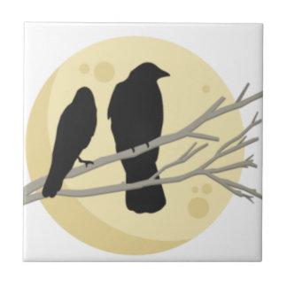 Azulejo Cuervo negro en rama de árbol