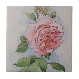 Azulejo De Cerámica 5337 color de rosa rosados