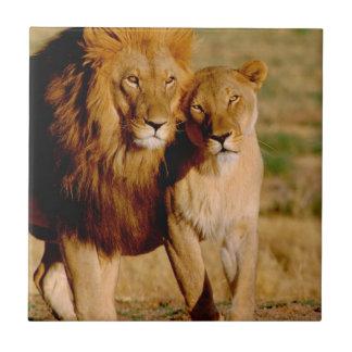 Azulejo De Cerámica África, Namibia, Okonjima. León y leona
