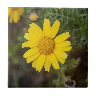 Azulejo De Cerámica Amarillo del Cu de la flor de la margarita