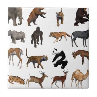 Azulejo De Cerámica Animales salvajes