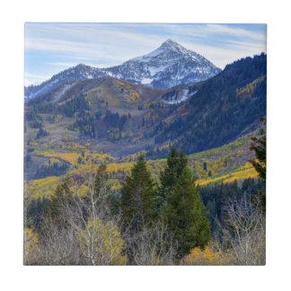 Azulejo De Cerámica Caída en el pico de la cascada y Sundance del lazo