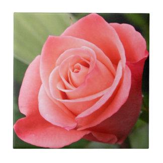 Azulejo De Cerámica Color de rosa rosado