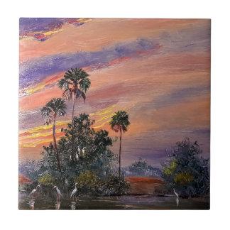 Azulejo De Cerámica Colores de la puesta del sol de la Florida