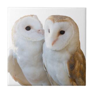 Azulejo De Cerámica dos amigos de los búhos