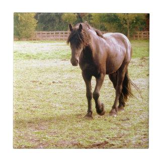 Azulejo De Cerámica El caminar relajado del caballo de Brown