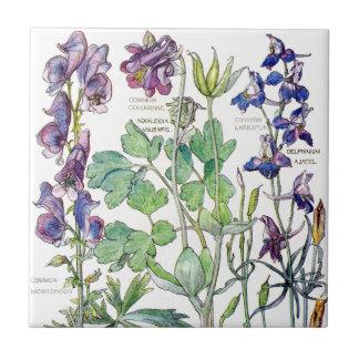 Azulejo De Cerámica El Wildflower botánico de Columbine florece la