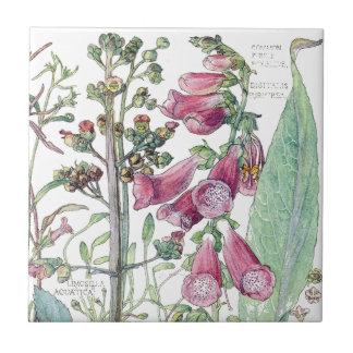 Azulejo De Cerámica El Wildflower botánico del Foxglove florece la