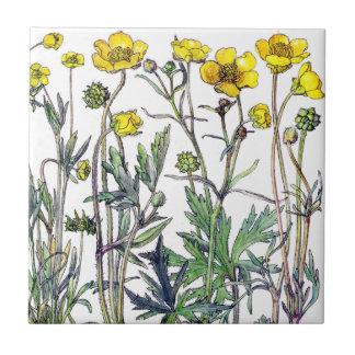 Azulejo De Cerámica El Wildflower botánico del ranúnculo florece la