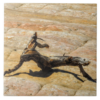 Azulejo De Cerámica Escultura DE MADERA salvaje