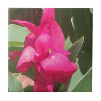 Azulejo De Cerámica Flor rosada