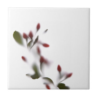 Azulejo De Cerámica Flores de sombra -2