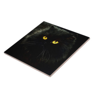 Azulejo De Cerámica Gato negro
