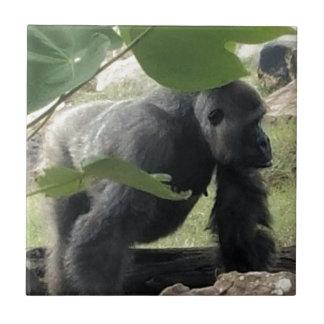 Azulejo De Cerámica Gorila del Silverback