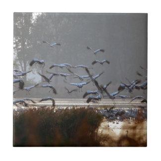 Azulejo De Cerámica Grúas del vuelo en un lago