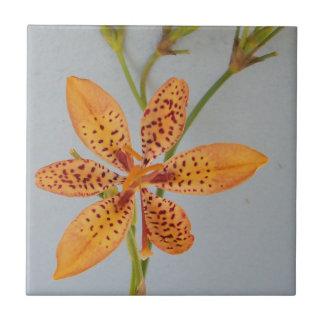 Azulejo De Cerámica Iris manchado naranja llamado un lirio de