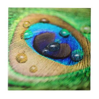 Azulejo De Cerámica La pluma macra abstracta del Peafowl del pavo real