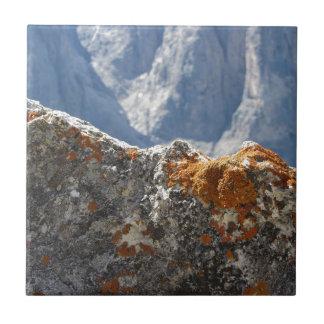 Azulejo De Cerámica Liquenes anaranjados que crecen en cara de la roca