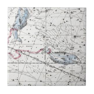 Azulejo De Cerámica Mapa de la placa XXII de las constelaciones