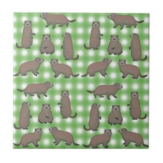 Azulejo De Cerámica Marmota selección