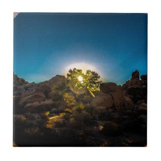Azulejo De Cerámica Parque de Joshua TreeNational de la salida del sol
