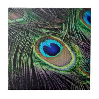 Azulejo De Cerámica Peafowl del pájaro del pavo real