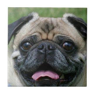 Azulejo De Cerámica Perro del barro amasado