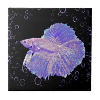 Azulejo De Cerámica Pescados que luchan púrpuras iridiscentes