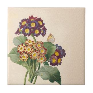 Azulejo De Cerámica Primavera botánica