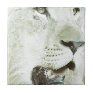 Azulejo De Cerámica ¡Primer de la cara del león!