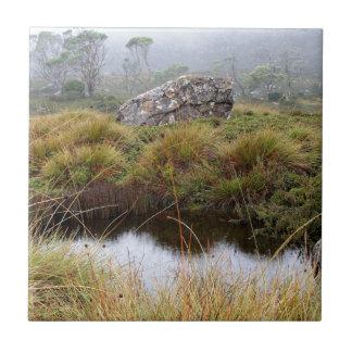 Azulejo De Cerámica Reflexiones brumosas de la mañana, Tasmania,