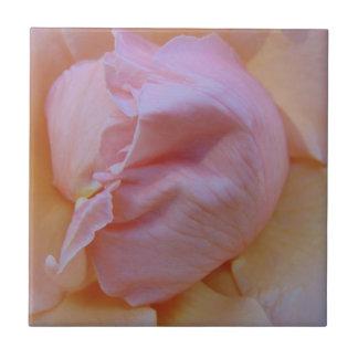 Azulejo De Cerámica Rosa delicado