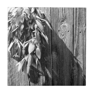 Azulejo De Cerámica Sabio rústico - blanco y negro