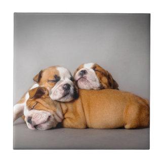 Azulejo Dogo inglés el dormir