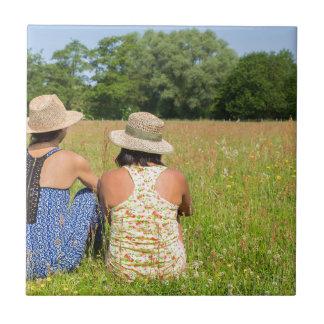 Azulejo Dos amigos que se sientan junto en meadow.JPG