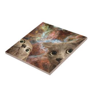 Azulejo Dos gatos grises en espacio antes de una nebulosa