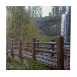 Azulejo El puente de madera en la plata cae parque de