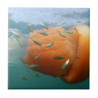Azulejo La medusa del barril nada con la caballa