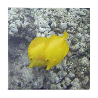 Azulejo Los pescados amarillos de Tang