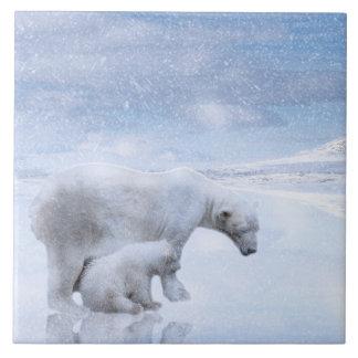 Azulejo Oso polar y cachorro
