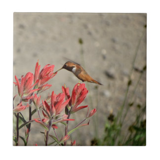 Azulejo Pájaro rojo de la flor