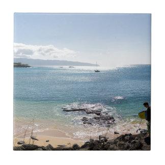 Azulejo panorama de la bahía del waimea