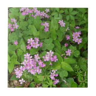 Azulejo Pequeños wildflowers delicados rosados