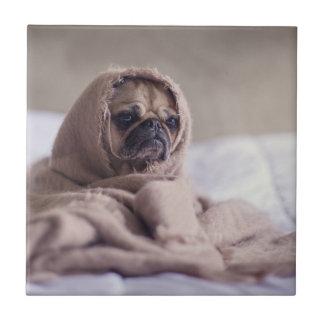 Azulejo Perro de perrito del barro amasado que abraza en