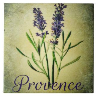 Azulejo Provence I