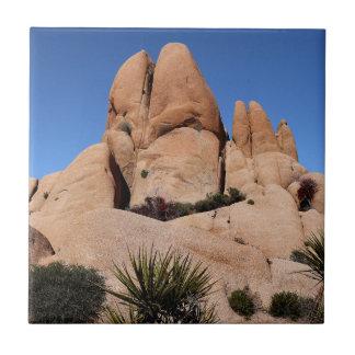 Azulejo Rocas en el parque nacional de la yuca